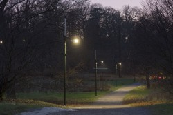 Djurgården Active Lights Gatubelysning 2014.11.19-1