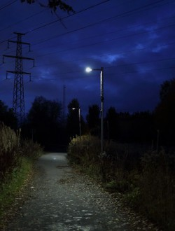 Borås Stad Viared Active Lights Gatubelysning 10W 2013-2